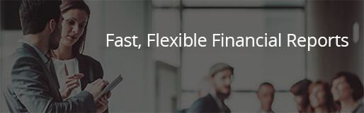 Fast, Flexible Financial Reports