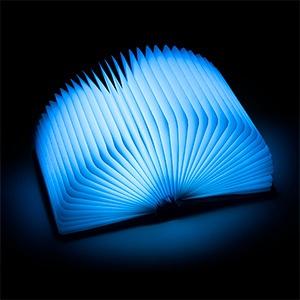 ThinkGeek book_light.jpg