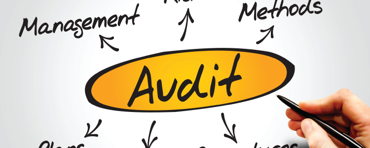 When State Auditors Head out of State