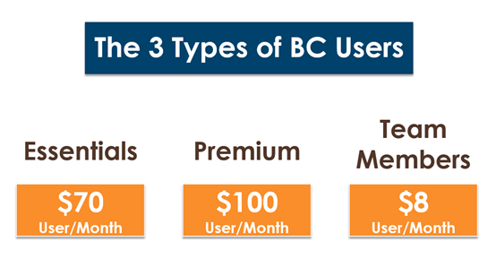 Business Central User Cost